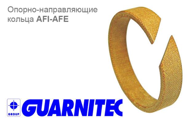 поступили опорно-направляющие кольца AFI-AFE Guarnitec - промснаб