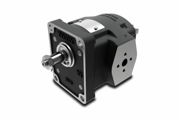 Чугунный шестеренный мотор 2XMW - Group 2 (второй группы) Galtech - промснаб спб